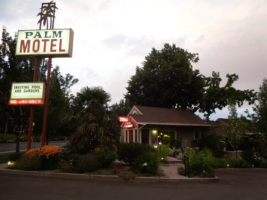 The Palm : Motel office and grounds