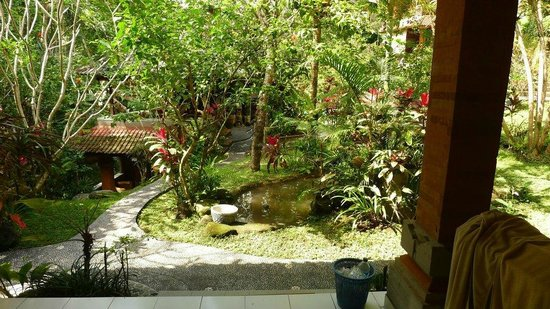 Gustis Garden Bungalows: view from the room