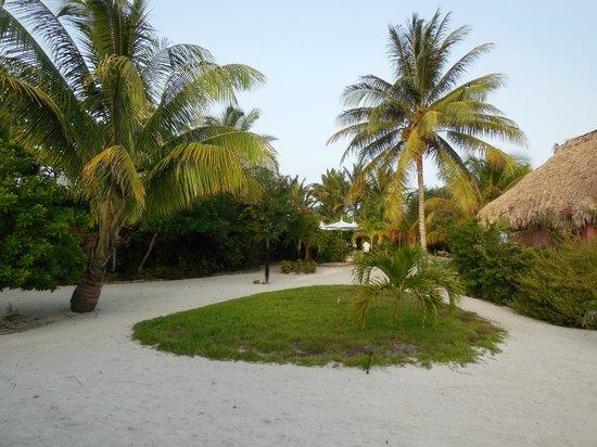 Matachica Resort & Spa: Grounds view