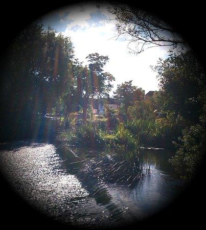 The Star Inn Bed & Breakfast : Weir across the garden