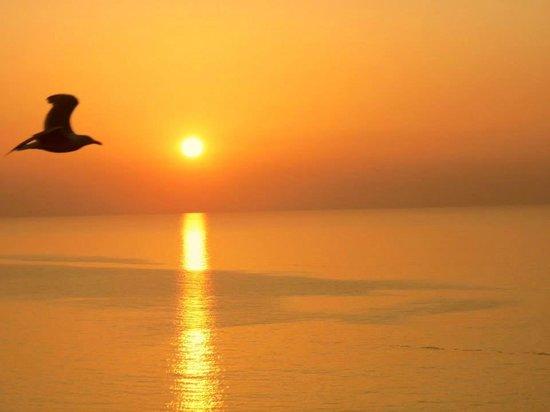 Natural Retreats Fistral Beach: The sun goes down at the beach