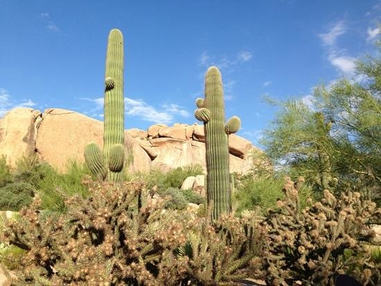 Boulders Resort & Spa, Curio Collection by Hilton : 1 Mile Nature Walk
