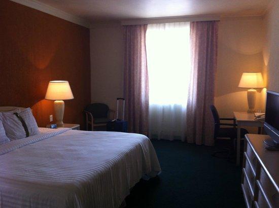 Holiday Inn Tampico Altamira: Habitacion tipica