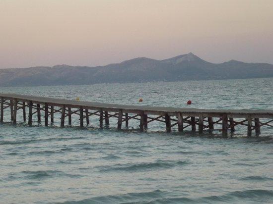 Hotel JS Sol de Alcudia: Strand (Steg)