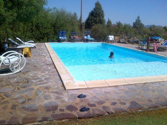 Bed and breakfast VillaFranca: la piscina, una goduria!