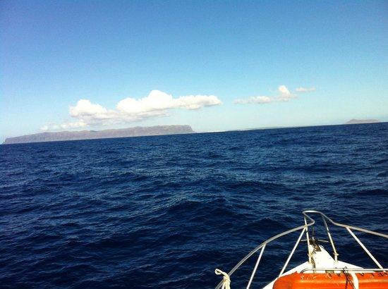 Seasport Divers: Niihau!
