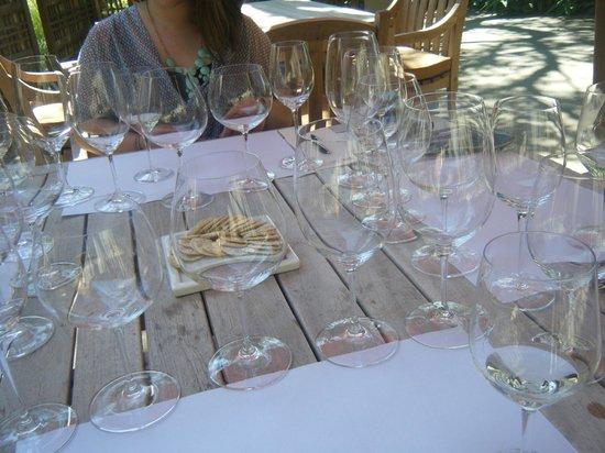 Matanzas Creek Winery: yum