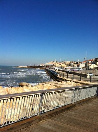 Jaffa Slope Park: right on the beach