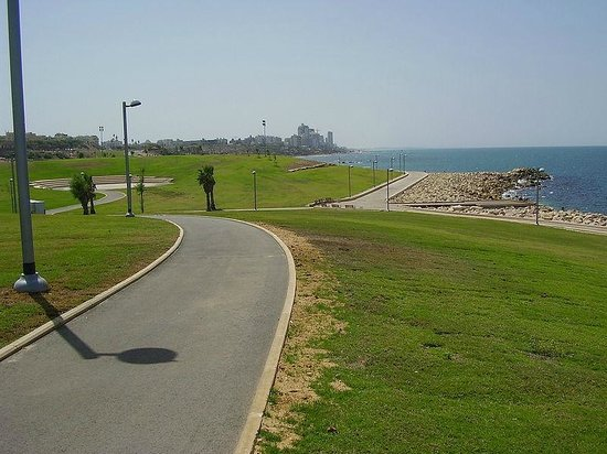 Jaffa Slope Park: going south