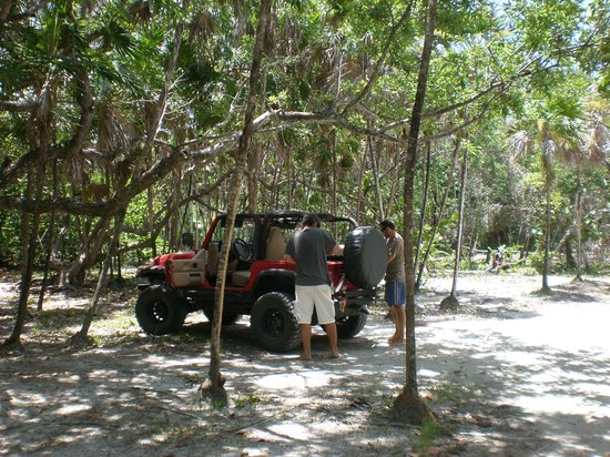 Lands End - Ocean Front Lodge: with Roatan 4x4 in Palmettobay