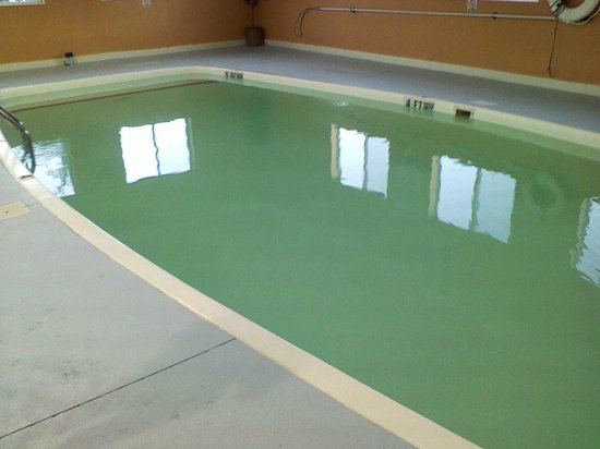 BEST WESTERN New Baltimore Inn : The green pool (and it was not a green liner!!)