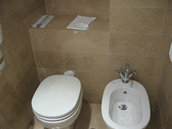 Tritone Hotel: トイレ