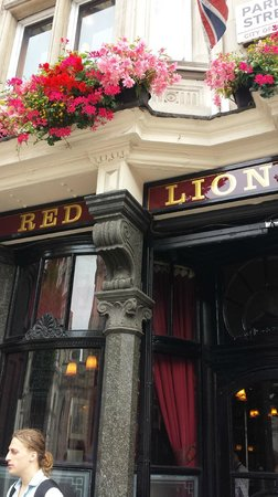 The Red Lion: Red lion
