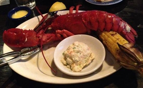 Ford's Fish Shack : Lobster