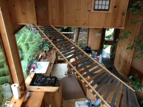 Treehouse Skye: Artsy!