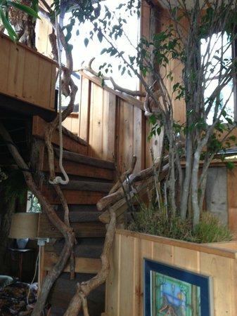 Treehouse Skye: Staircase
