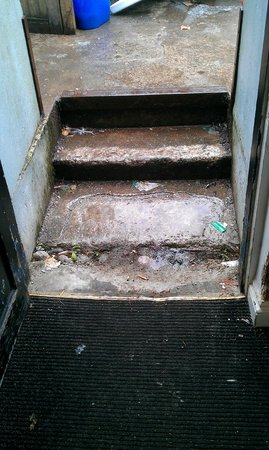 The Inn on the Shore: Guest's rear entrance - worn steps, dirty carpet