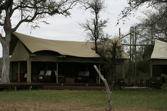 Rhino Walking Safaris at Plains Camp: Plains Camp