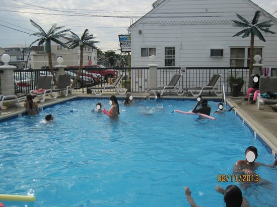 Horizon Motor Inn: Pool