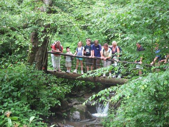 LeConte Lodge: Alum cave trail