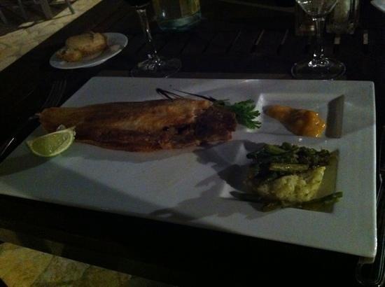 Restaurant TOC DE SOL: Zeetong