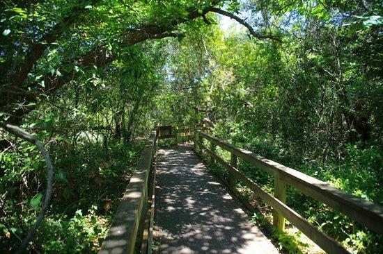 Hoop Pole Creek Nature Trail
