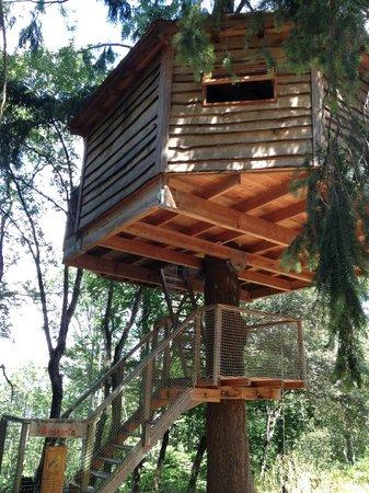 Caba a bosqueta fotograf a de cabanes als arbres sant - Casas en los arboles sant hilari ...
