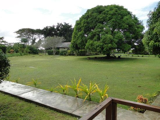 The Savaiian Hotel: The Gardens