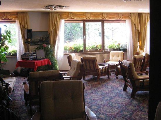 Hotel Europa: Salotto - Sala intrattenimento serate
