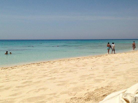 Mahmya Island : Ile Mahmaya