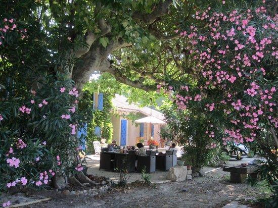 L'Oustau de Mistrau: la végétation, wow!