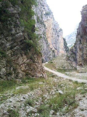 파란 산 마르티노 사진