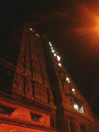 Sri Ranganathaswamy Temple: Srirangam Rajagopuram