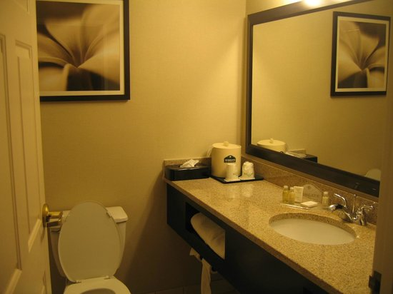 Wingate by Wyndham Lexington: sink/toilet/shower