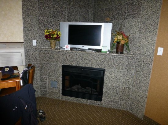 Rushmore Express Inn & Family Suites : TV/fireplace in living area