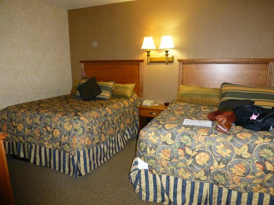 Rushmore Express Inn & Family Suites: 2 very comfortable queen beds