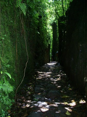 Mombacho Volcano: Por los senderos del Volcán.