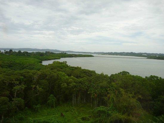 Cliffside Hotel Palau : Standard single without balcony