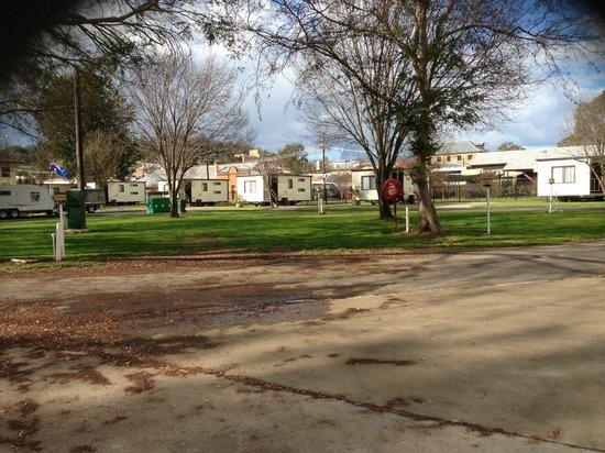 Cowra Van Park: General view of Park