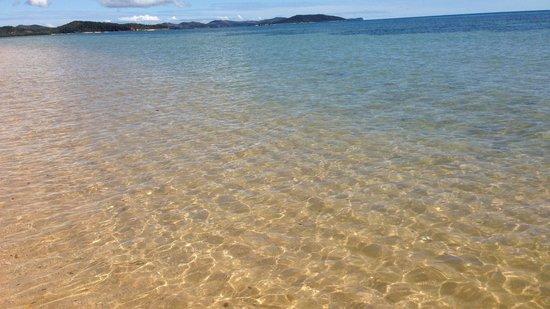 Eden Lodge: Mer transparente le matin plus que l'après-midi