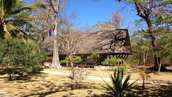 Eden Lodge: Le lodge