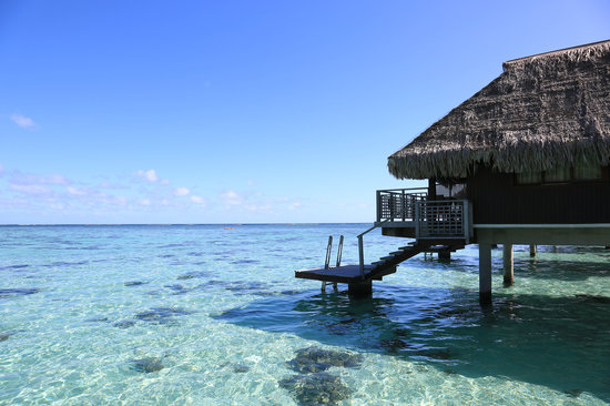 King Panoramic Overwater Bungalow Picture Of Hilton Moorea