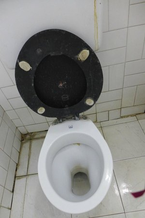 Rahi Hotel Gomti: Dirty Toilet