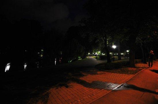 Radisson Blu Ridzene Hotel: Park at night