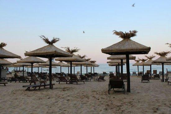 HVD Viva Hotel: Пляж