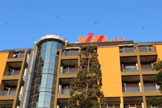 HVD Viva Hotel: Вид на отель и птиц на верхнем этаже