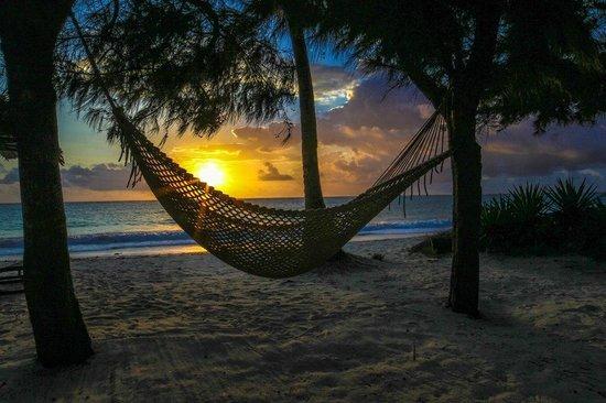 Anna of Zanzibar : Sunrise