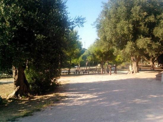 Cellino San Marco, Italie : area picnic