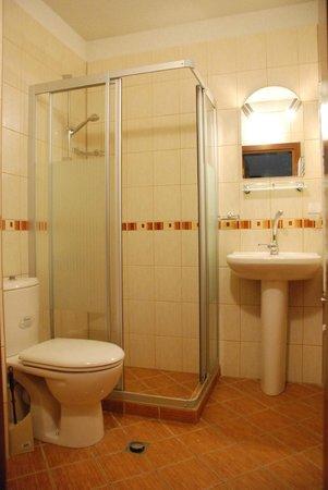 Dream House Apartments: Bathroom