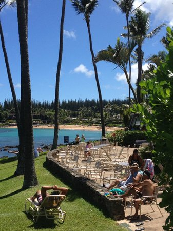 Napili Shores Maui by Outrigger: Pool and lawn area